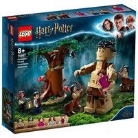 LEGO Harry Potter Zakazany Las: spotkanie Umbridge 75967 (8+)