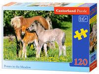 Castorland Puzzle  6+ 120 elementów