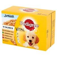 PEDIGREE Vital Protection Junior w galarecie Karma pełnoporcjowa (12 x 100 g)
