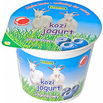 DANMIS Kozi jogurt jagodowy