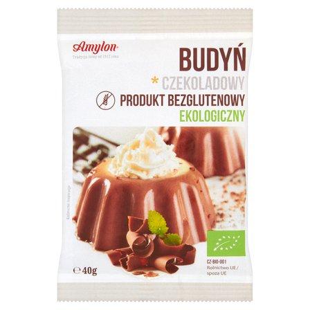 AMYLON Budyń czekoladowy ekologiczny (1)