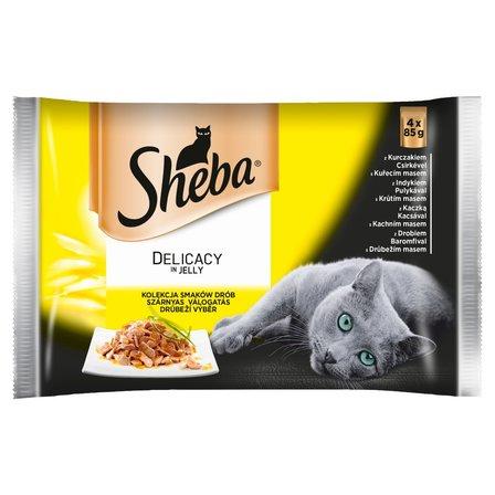 SHEBA Delicato Delikatne drobiowe dania w galaretce Karma pełnoporcjowa 4 x 85 g (1)