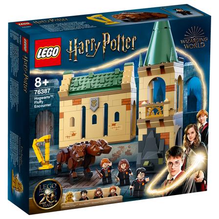 LEGO Harry Potter Hogwart: spotkanie z Puszkiem 76387 (8+) (1)